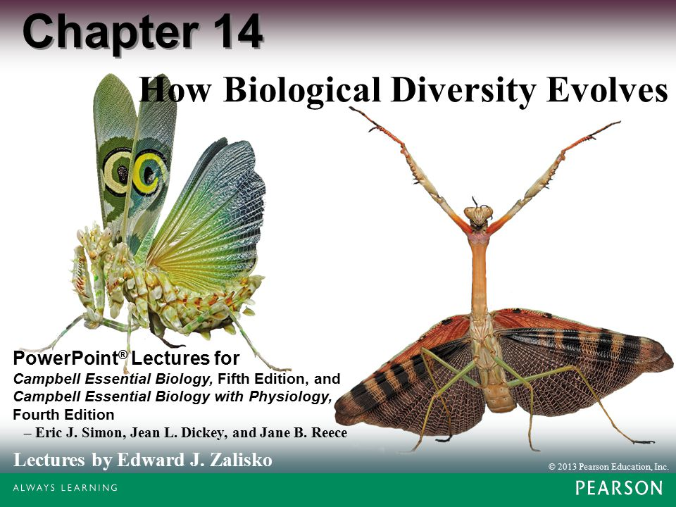 © 2013 Pearson Education, Inc. Lectures by Edward J. Zalisko PowerPoint ® Lectures for Campbell Essential Biology, Fifth Edition, and Campbell Essenti