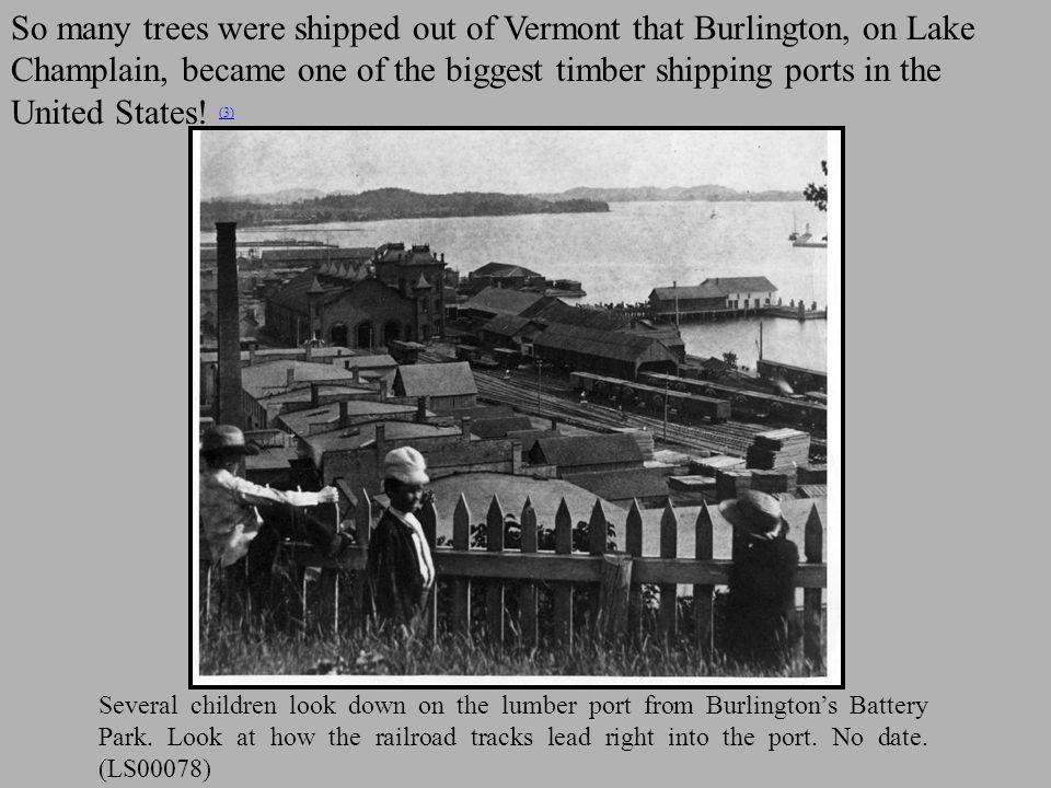 Several children look down on the lumber port from Burlington's Battery Park.