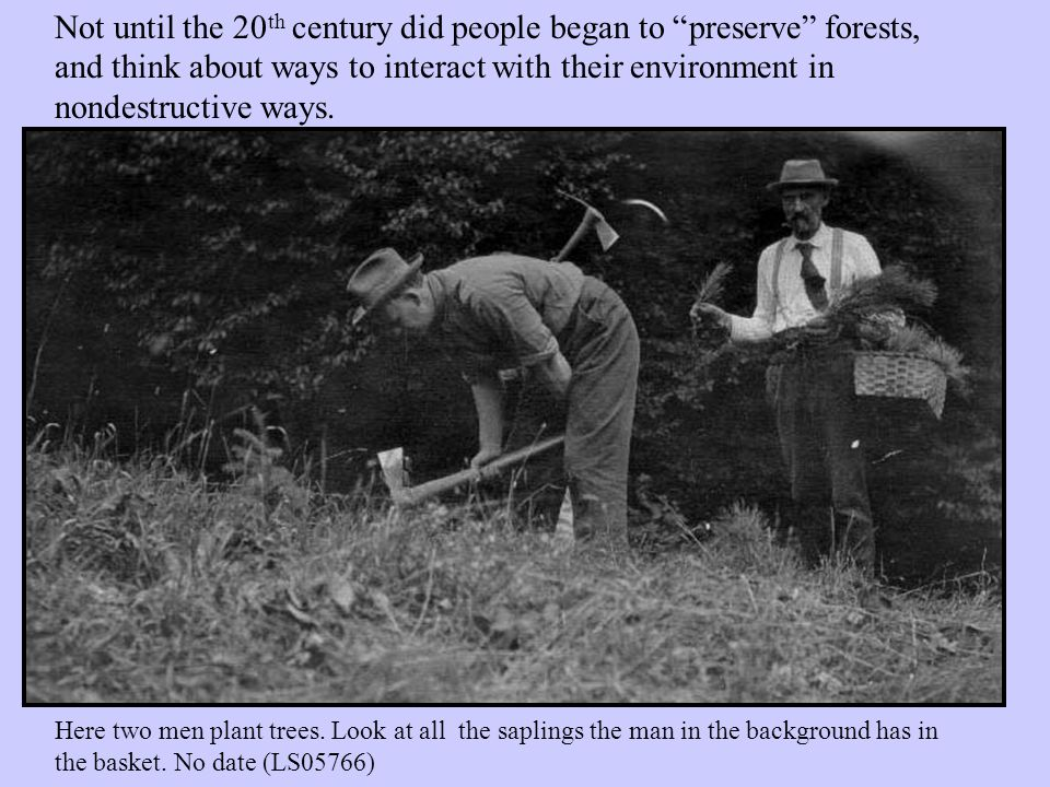 Not until the 20 th century did people began to preserve forests, and think about ways to interact with their environment in nondestructive ways.