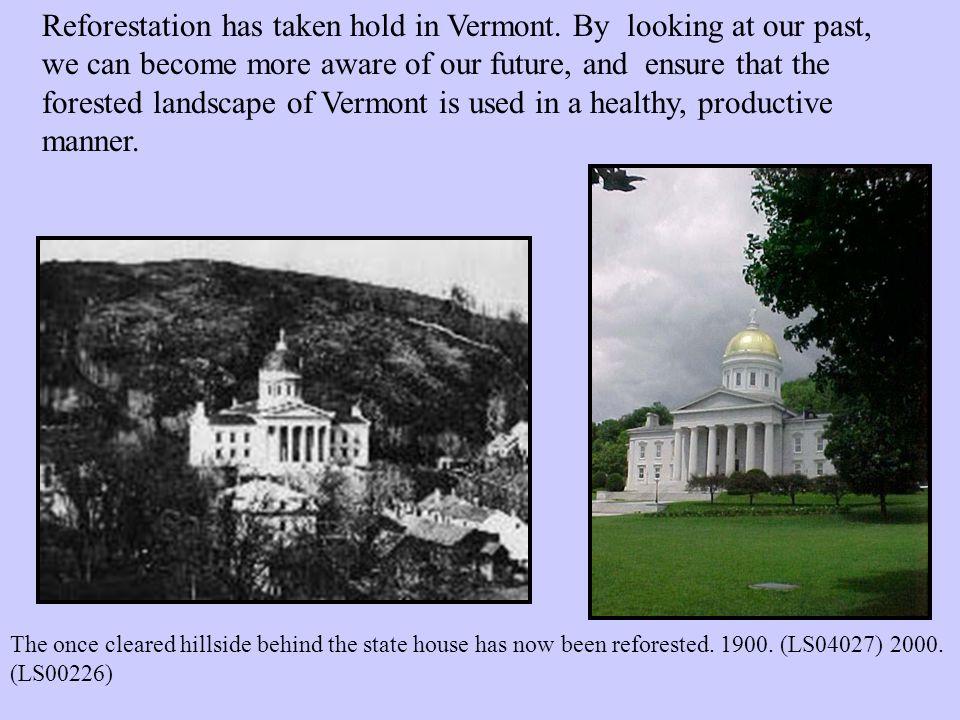 Reforestation has taken hold in Vermont.