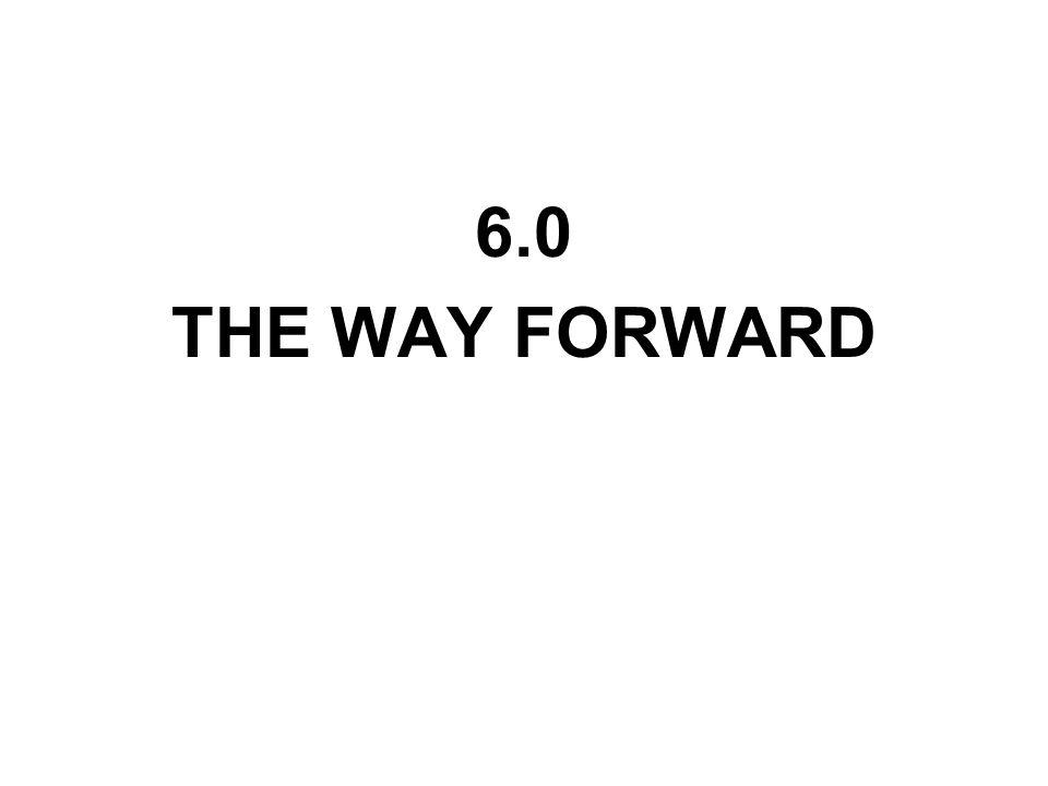 6.0 THE WAY FORWARD