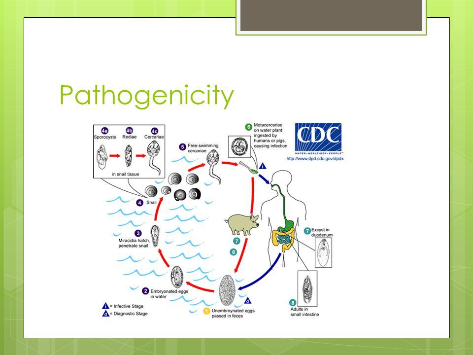 Tooth pathogen frequencies