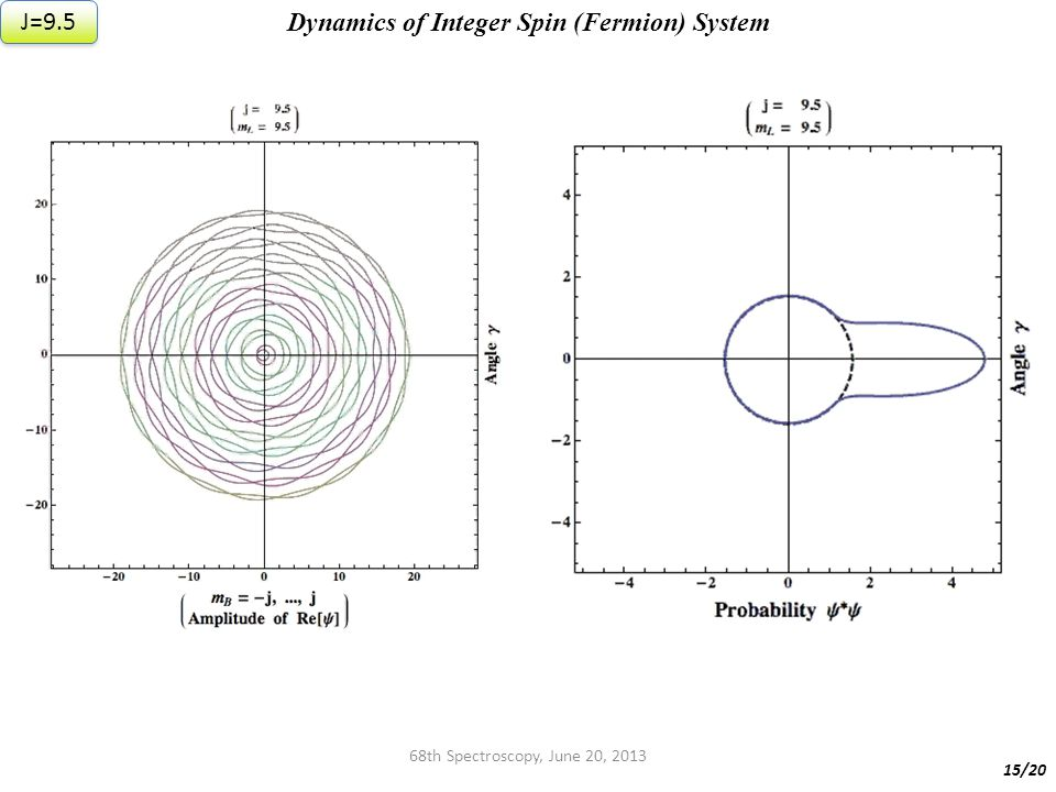68th Spectroscopy, June 20, 2013 Dynamics of Integer Spin (Fermion) System 15/20 J=9.5
