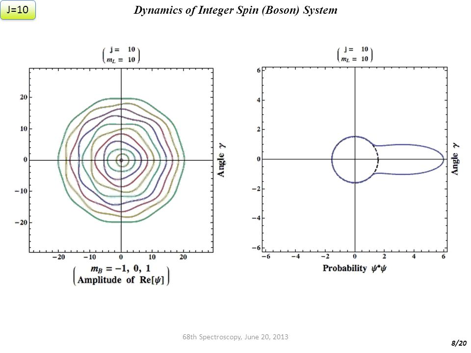 68th Spectroscopy, June 20, 2013 Dynamics of Integer Spin (Boson) System 8/20 J=10