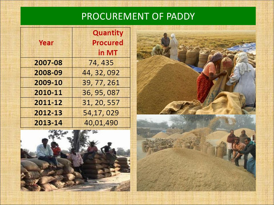 PROCUREMENT OF PADDY Year Quantity Procured in MT 2007-0874, 435 2008-0944, 32, 092 2009-1039, 77, 261 2010-1136, 95, 087 2011-1231, 20, 557 2012-1354
