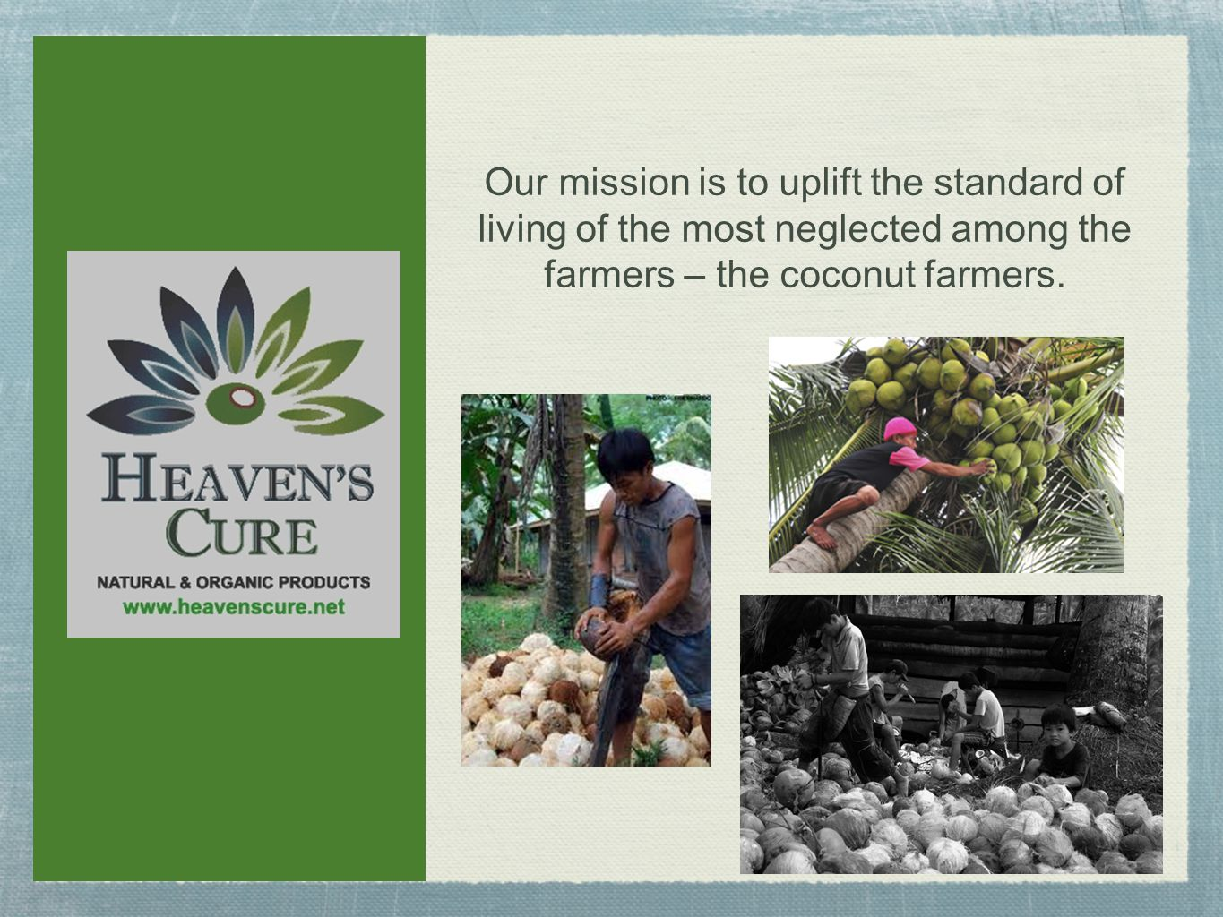 Our mission is to uplift the standard of living of the most neglected among the farmers – the coconut farmers.
