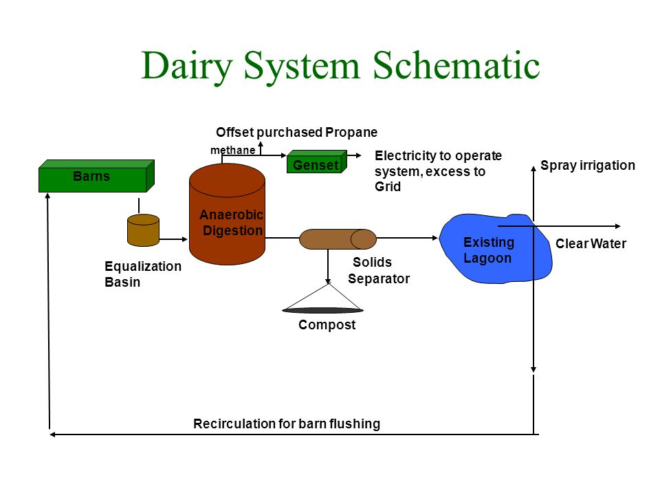 Dairy System Schematic Spray irrigation Genset methane Existing Lagoon Solids Separator Compost Equalization Basin Anaerobic Digestion Barns Electricity to operate system, excess to Grid Clear Water Offset purchased Propane Recirculation for barn flushing