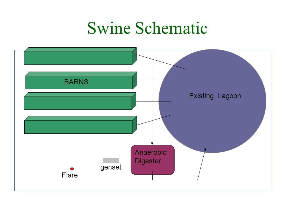 Swine Schematic Existing Lagoon BARNS Anaerobic Digester Flare genset
