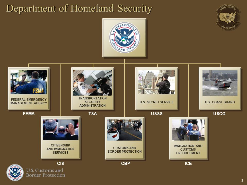 3 Department of Homeland Security IMMIGRATION AND CUSTOMS ENFORCEMENT FEDERAL EMERGENCY MANAGEMENT AGENCY TRANSPORTATION SECURITY ADMINISTRATION FEMAT