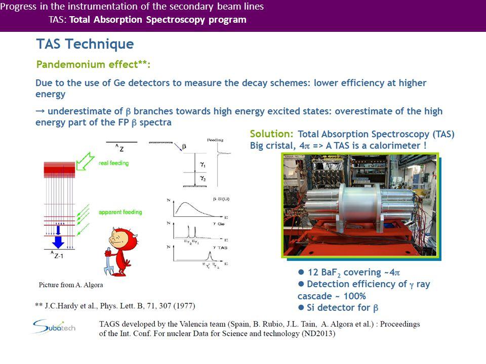 Progress in the instrumentation of the secondary beam lines TAS: Total Absorption Spectroscopy program