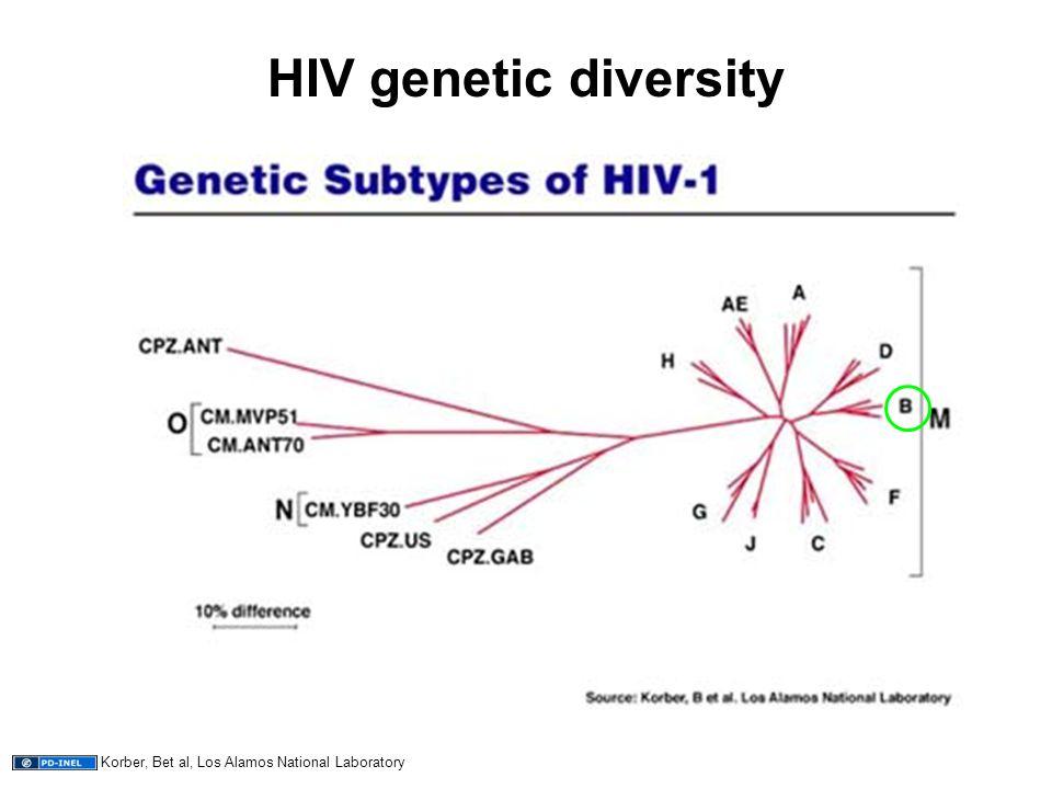 HIV genetic diversity Korber, Bet al, Los Alamos National Laboratory