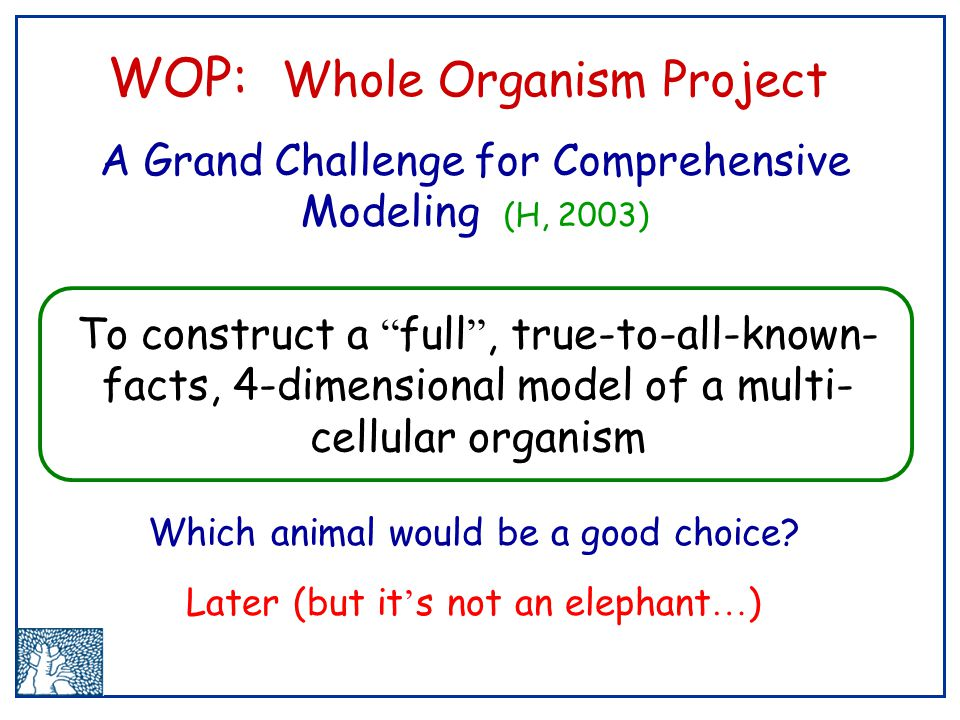 To construct a full , true-to-all-known- facts, 4-dimensional model of a multi- cellular organism WOP: Whole Organism Project A Grand Challenge for Comprehensive Modeling (H, 2003) Which animal would be a good choice.