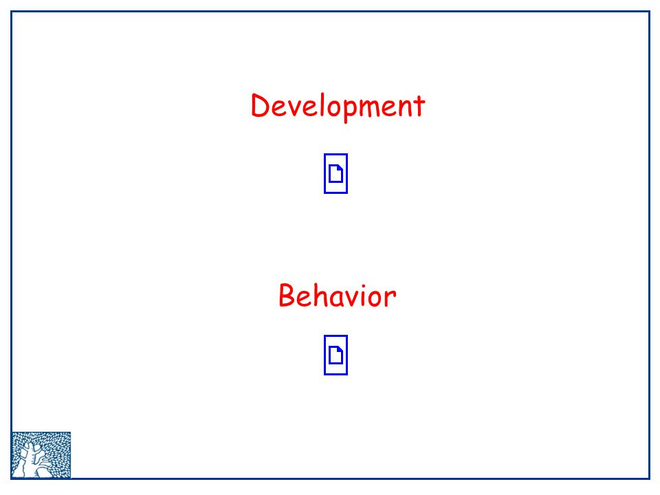 Development Behavior