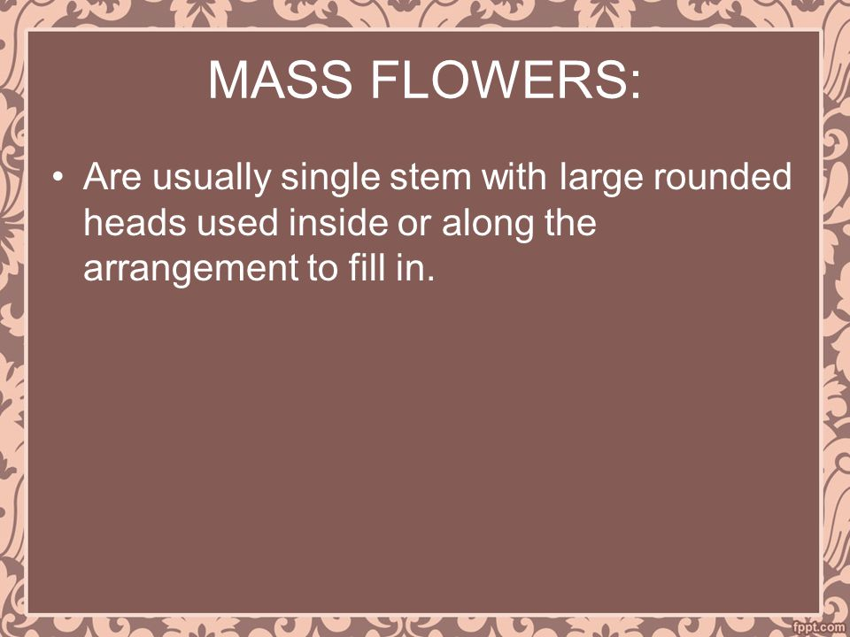 MASS FLOWERS: Are usually single stem with large rounded heads used inside or along the arrangement to fill in.