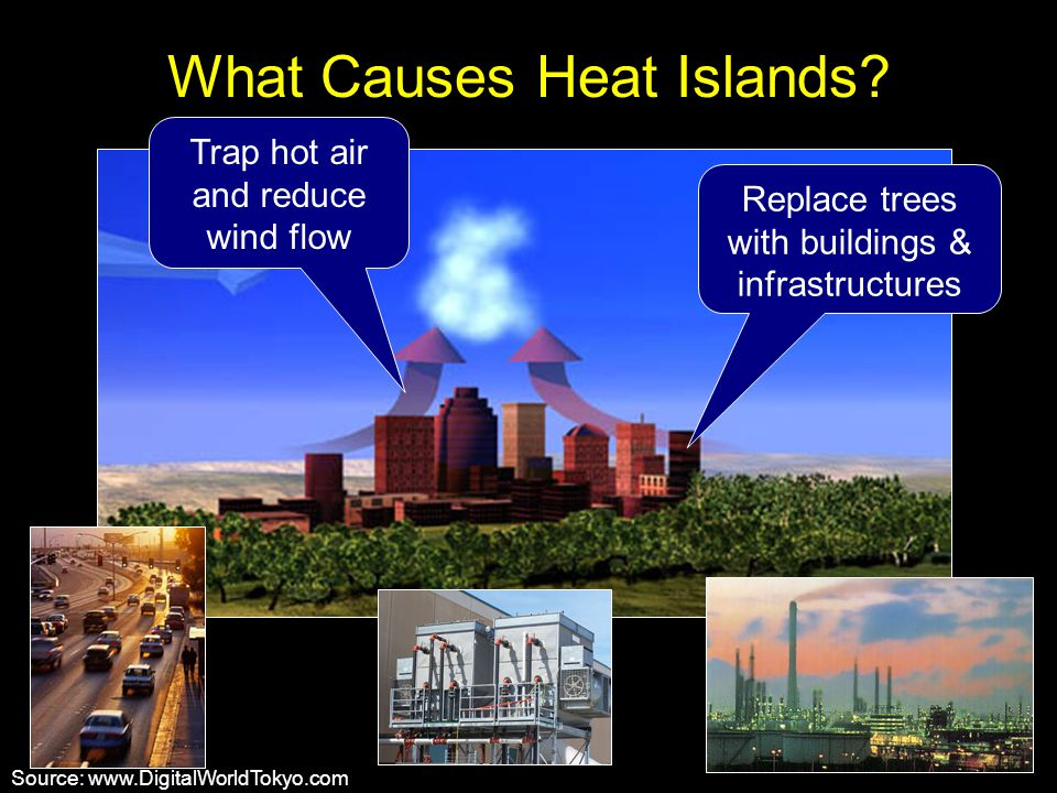 What Causes Heat Islands? Source: www.DigitalWorldTokyo.com Trap hot air and reduce wind flow Replace trees with buildings & infrastructures