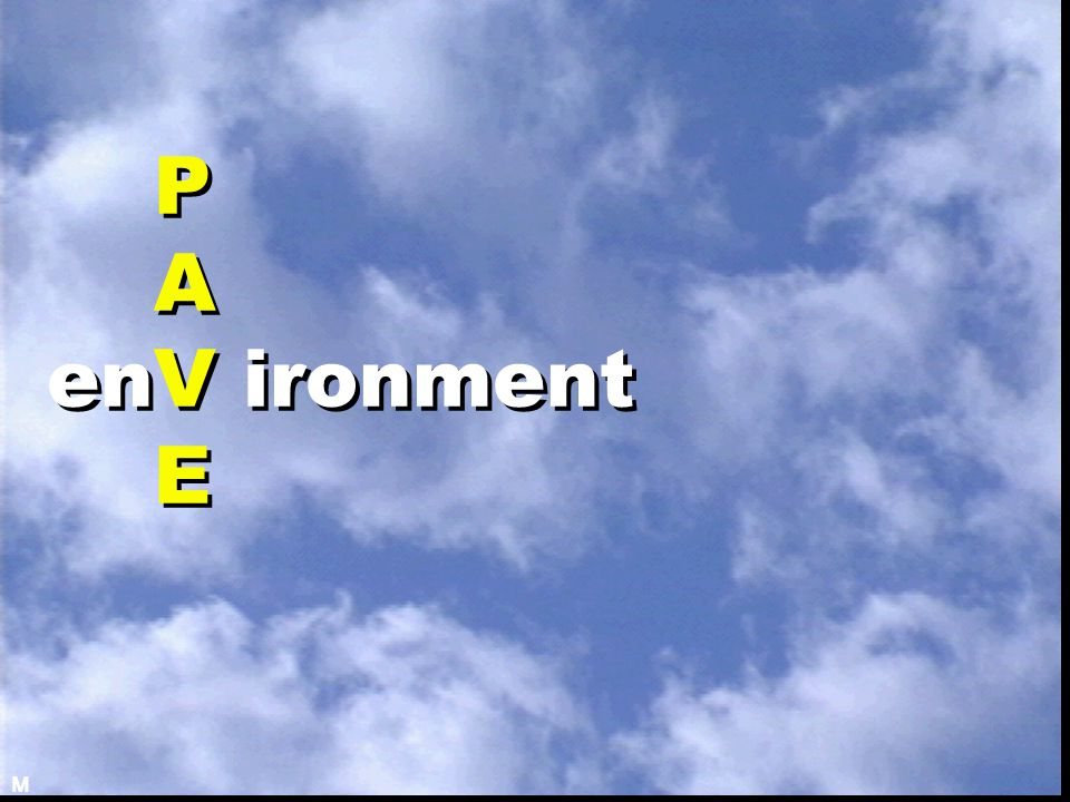 P A enV ironment E M