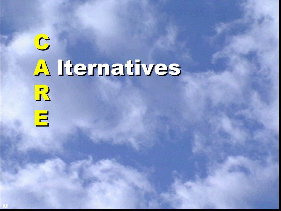 C A lternatives R E M