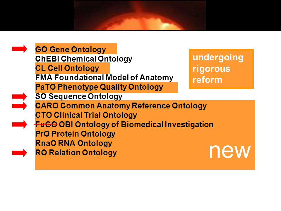 new undergoing rigorous reform GO Gene Ontology ChEBI Chemical Ontology CL Cell Ontology FMA Foundational Model of Anatomy PaTO Phenotype Quality Ontology SO Sequence Ontology CARO Common Anatomy Reference Ontology CTO Clinical Trial Ontology FuGO OBI Ontology of Biomedical Investigation PrO Protein Ontology RnaO RNA Ontology RO Relation Ontology