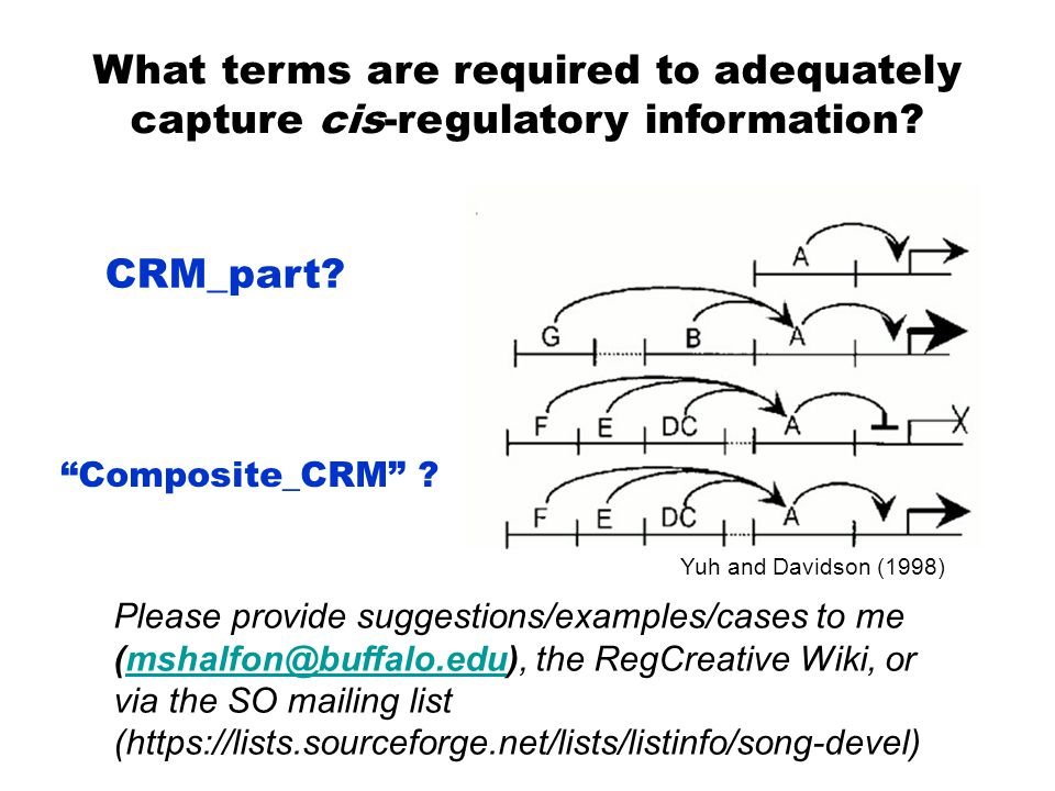 What terms are required to adequately capture cis-regulatory information.