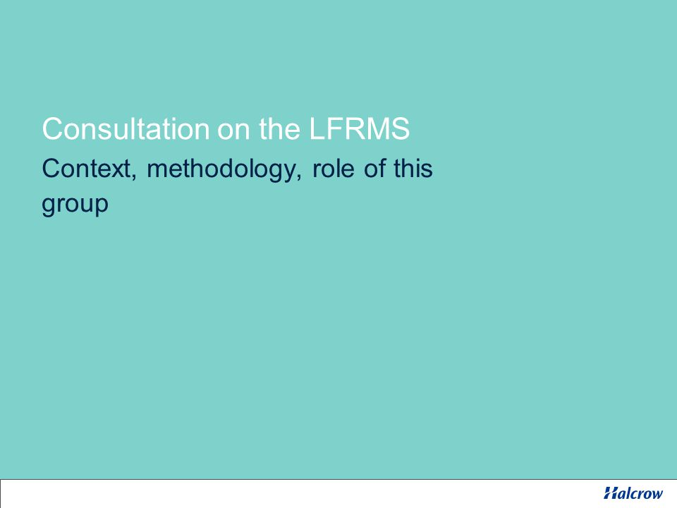 Consultation on the LFRMS Context, methodology, role of this group