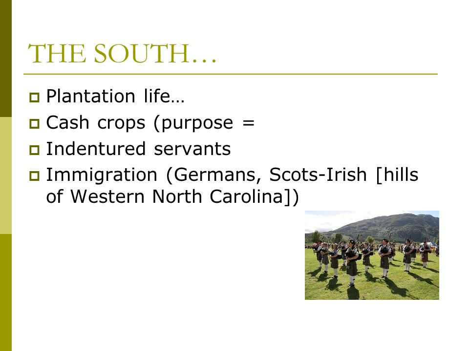 THE SOUTH…  Plantation life…  Cash crops (purpose =  Indentured servants  Immigration (Germans, Scots-Irish [hills of Western North Carolina])