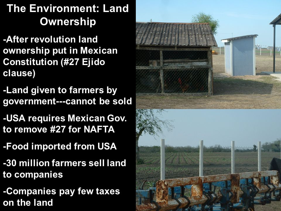 The Environment: Land Ownership -After revolution land ownership put in Mexican Constitution (#27 Ejido clause) -Land given to farmers by government--
