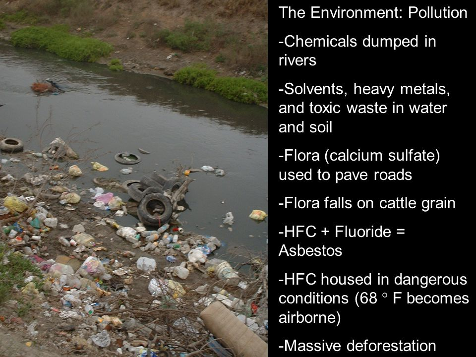 The Environment: Pollution -Chemicals dumped in rivers -Solvents, heavy metals, and toxic waste in water and soil -Flora (calcium sulfate) used to pav