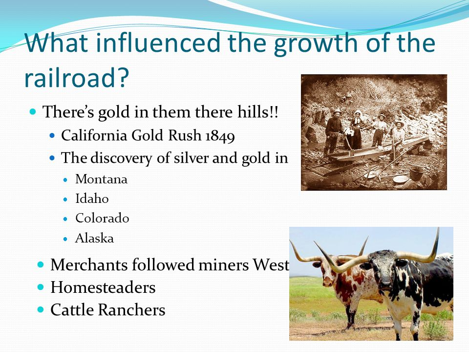What influenced the growth of the railroad. There's gold in them there hills!.
