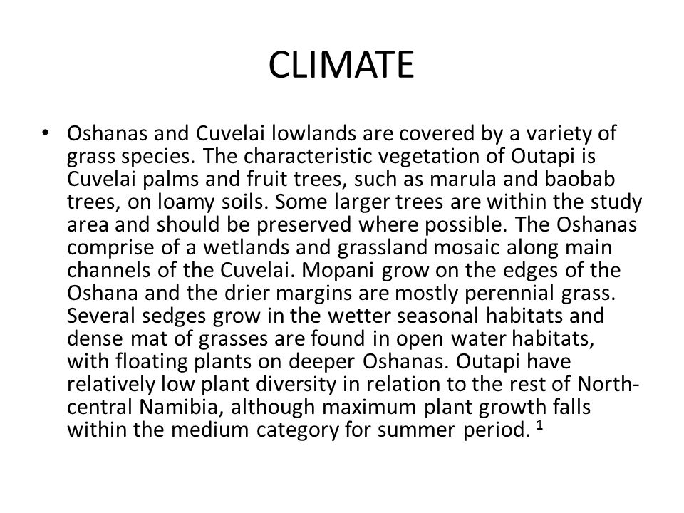 CLIMATE Oshanas and Cuvelai lowlands are covered by a variety of grass species.