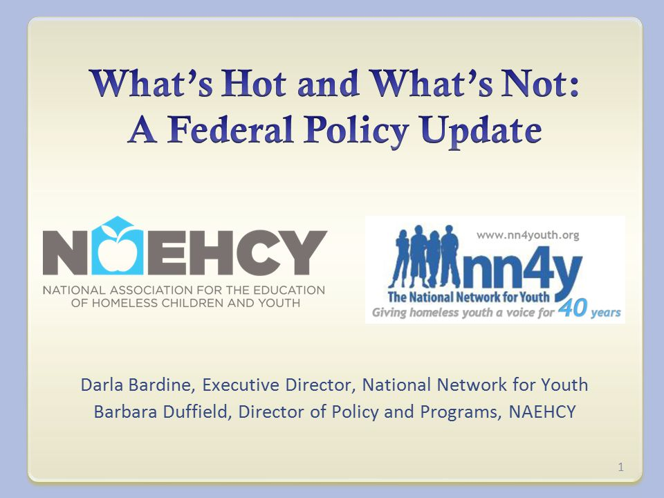 Darla Bardine, Executive Director, National Network for Youth Barbara Duffield, Director of Policy and Programs, NAEHCY 1