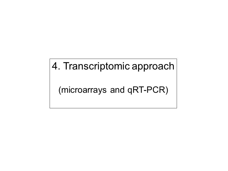 4. Transcriptomic approach (microarrays and qRT-PCR)