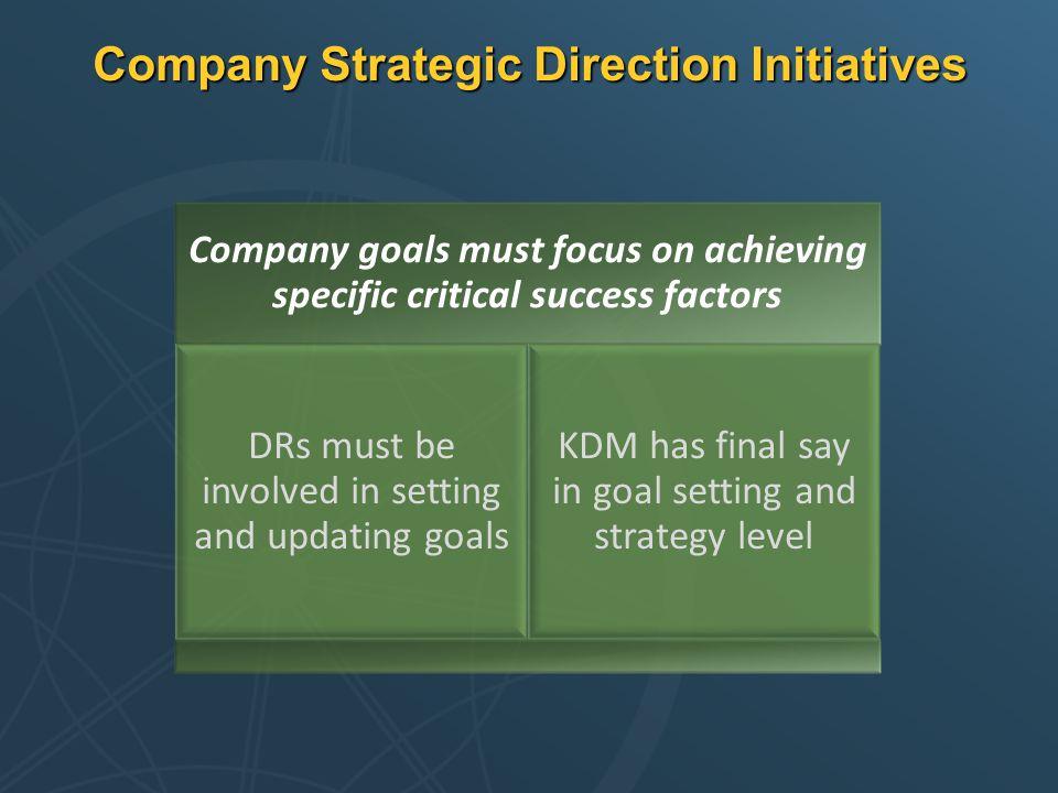 Company Strategic Direction Initiatives