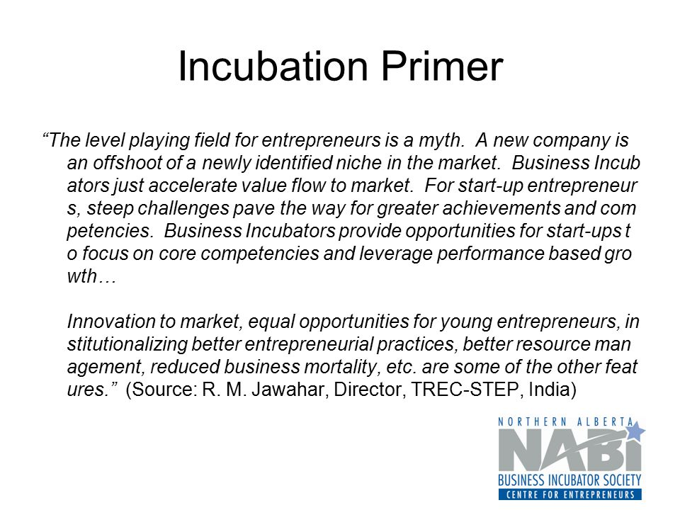 "Incubation Primer ""The level playing field for entrepreneurs is a myth. A new company is an offshoot of a newly identified niche in the market. Busine"
