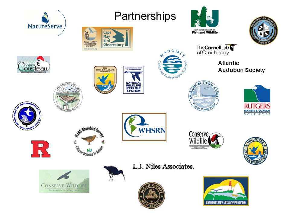 Atlantic Audubon Society Partnerships