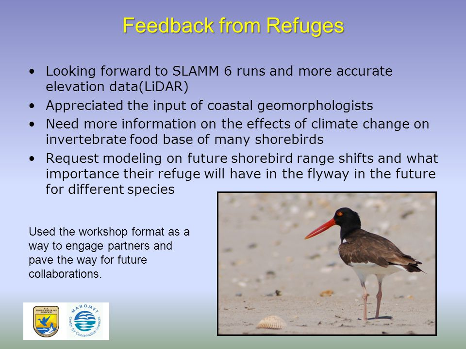Feedback from Refuges Looking forward to SLAMM 6 runs and more accurate elevation data(LiDAR) Appreciated the input of coastal geomorphologists Need more information on the effects of climate change on invertebrate food base of many shorebirds Request modeling on future shorebird range shifts and what importance their refuge will have in the flyway in the future for different species Used the workshop format as a way to engage partners and pave the way for future collaborations.