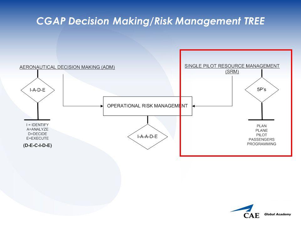 CGAP Decision Making/Risk Management TREE