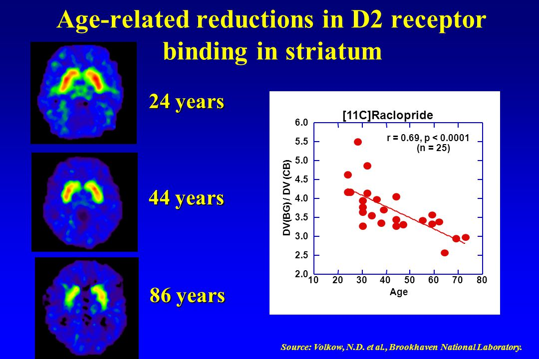 Age-related reductions in D2 receptor binding in striatum Source: Volkow, N.D.