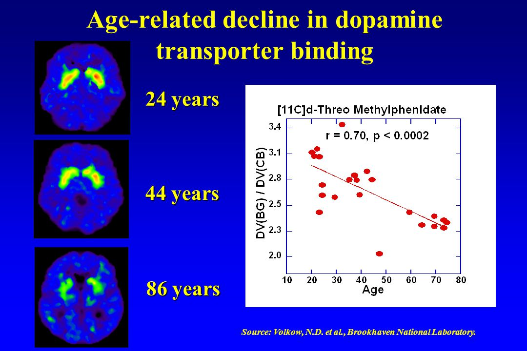 Age-related decline in dopamine transporter binding 24 years 44 years 86 years Source: Volkow, N.D.