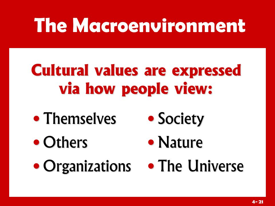 4- 21 Cultural values are expressed via how people view: The Macroenvironment Themselves Themselves Others Others Organizations Organizations Society Nature The Universe