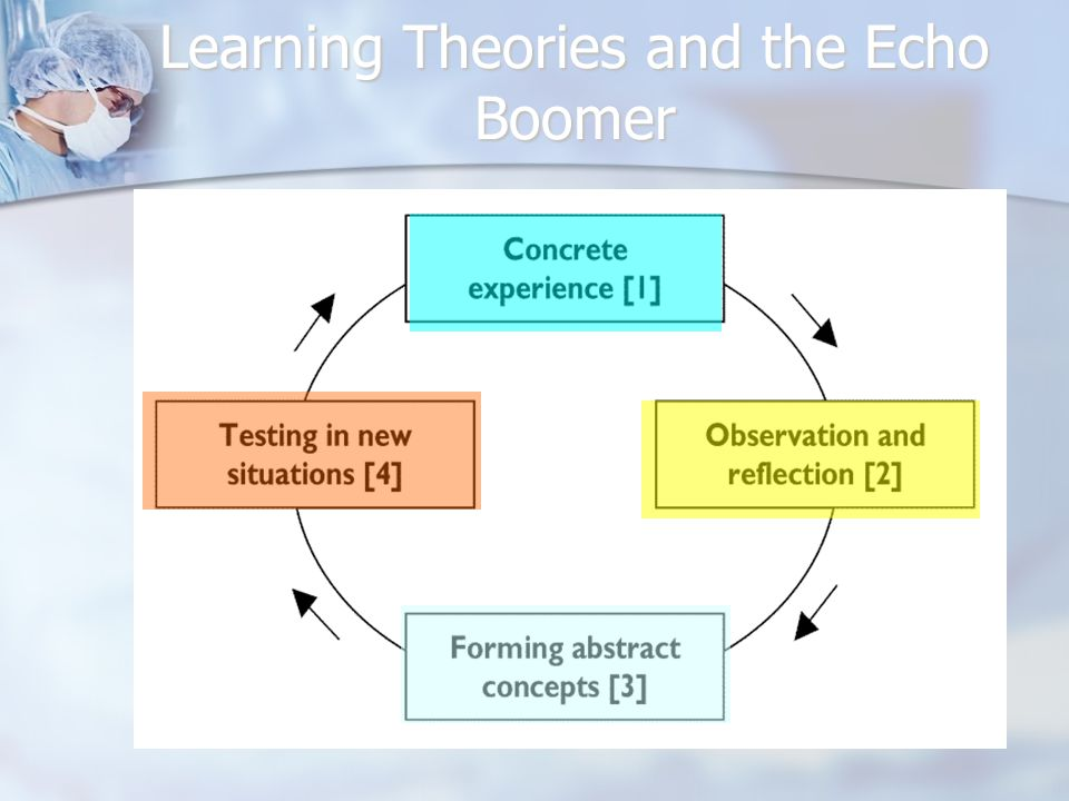 Learning Theories and the Echo Boomer