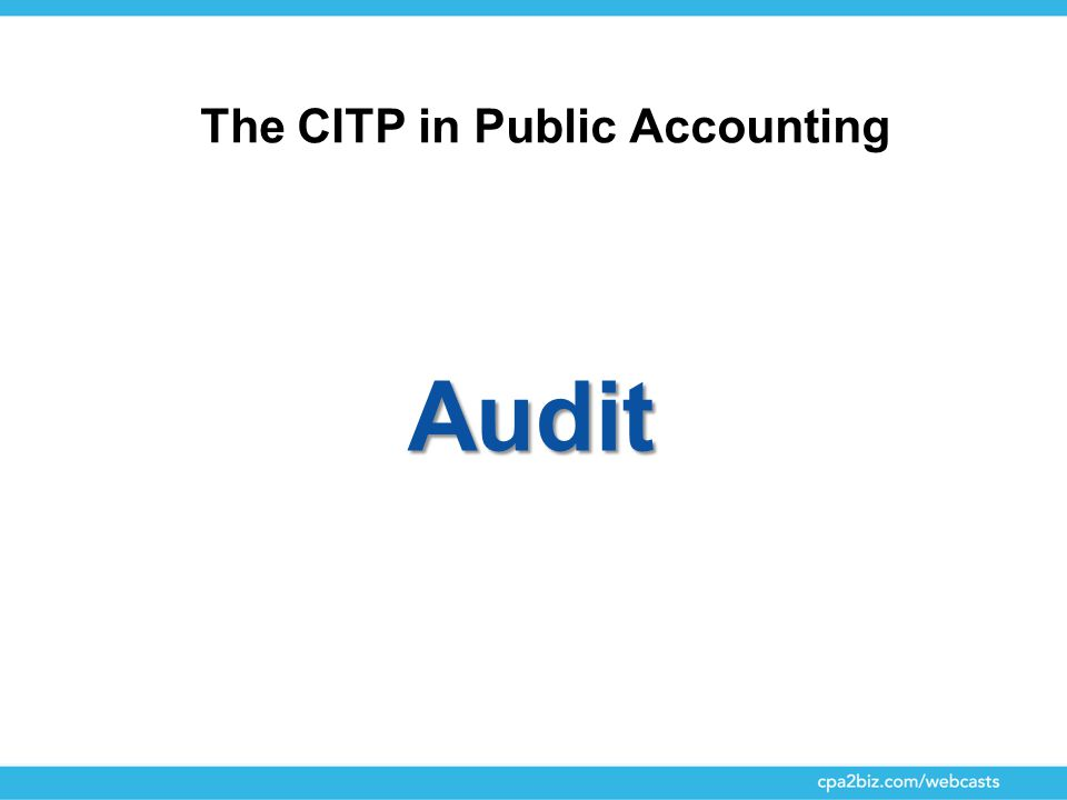 The CITP in Public Accounting Audit