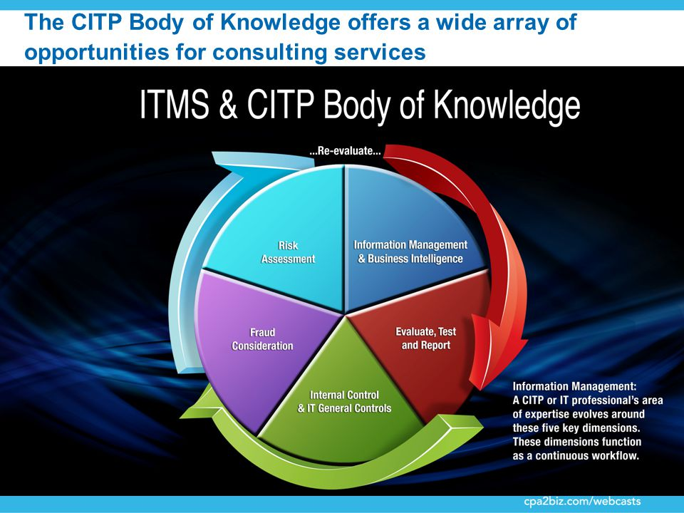 41 The CITP Body of Knowledge offers a wide array of opportunities for consulting services