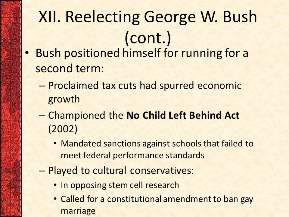 XII. Reelecting George W.
