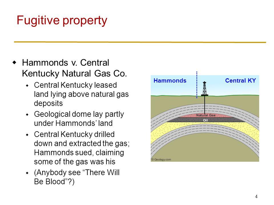 4  Hammonds v. Central Kentucky Natural Gas Co.