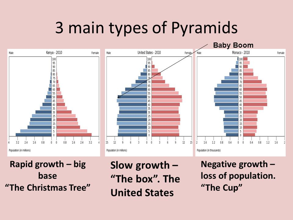 """3 main types of Pyramids Rapid growth – big base """"The Christmas Tree"""" Slow growth – """"The box"""". The United States Negative growth – loss of population."""