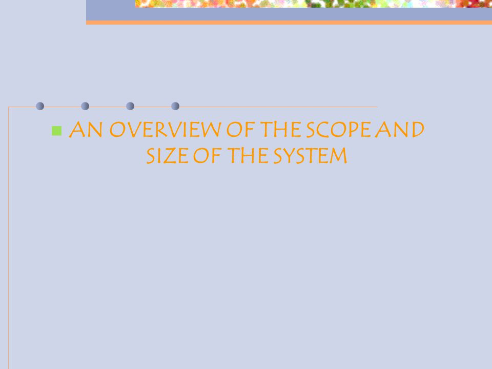 AN OVERVIEW OF THE SCOPE AND SIZE OF THE SYSTEM