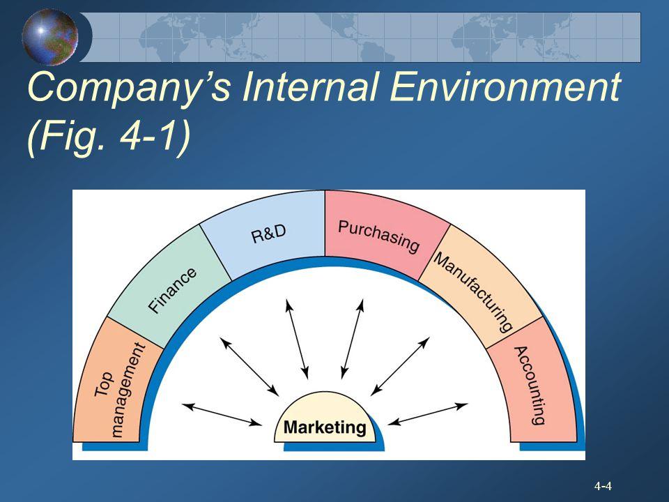 4-4 Company's Internal Environment (Fig. 4-1)