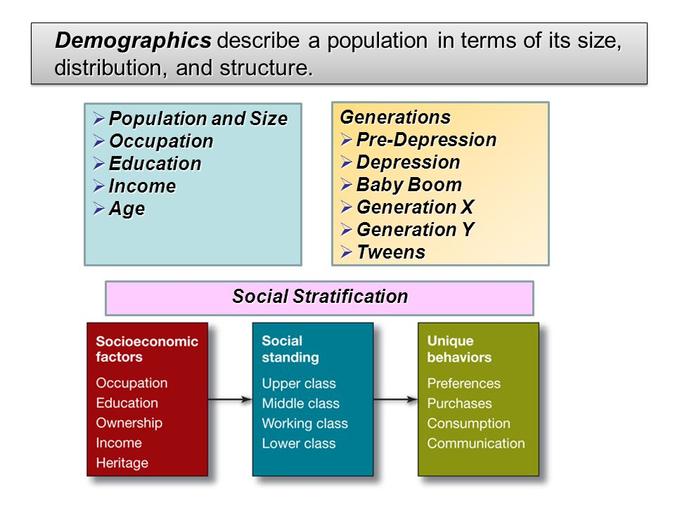 Demographics describe a population in terms of its size, distribution, and structure.  Population and Size  Occupation  Education  Income  Age Ge