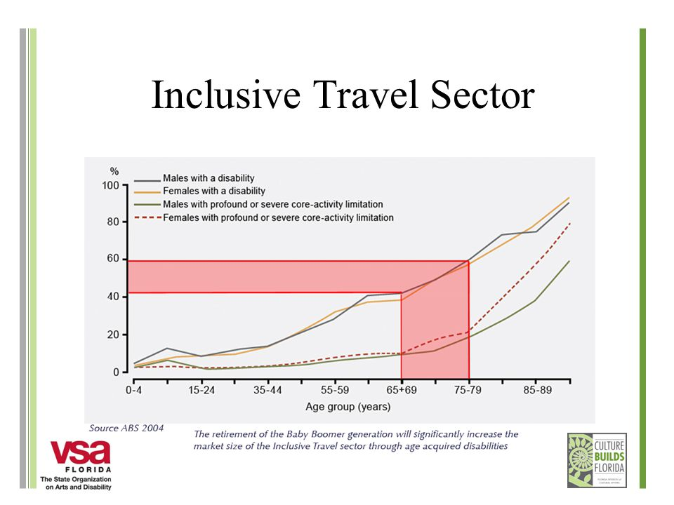 Inclusive Travel Sector