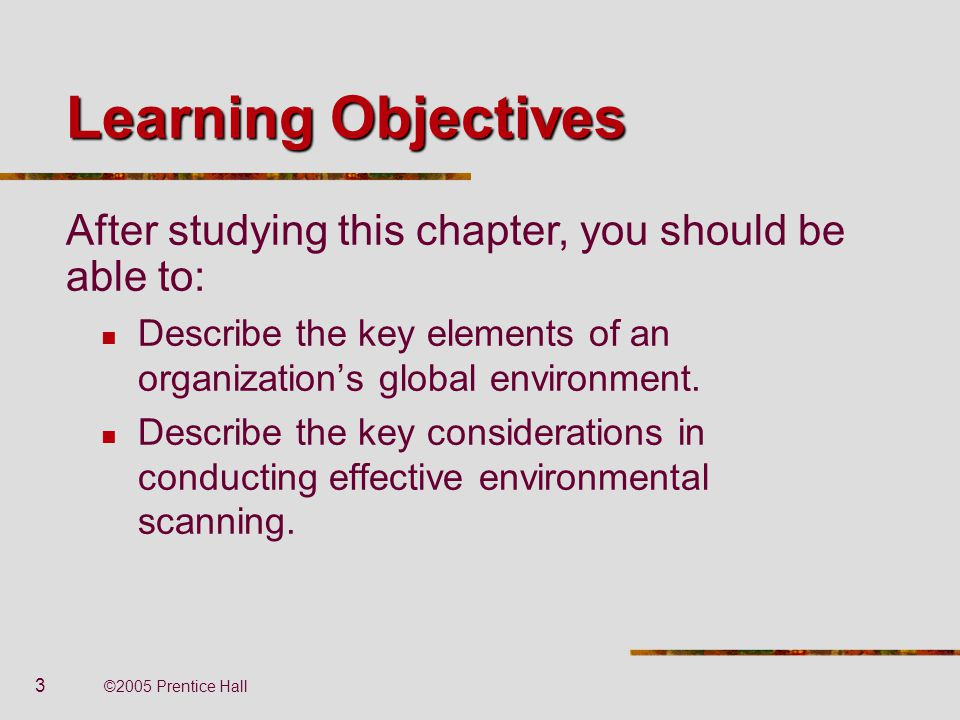 3 ©2005 Prentice Hall Learning Objectives Describe the key elements of an organization's global environment. Describe the key considerations in conduc